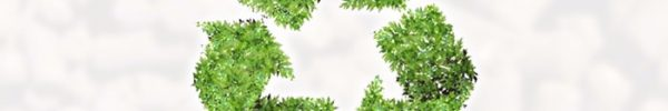 il-consiglio-di-stato-sulla-pollina-tra-sottoprodotto-e-rifiuto
