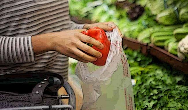 Verdure fresche e bioshopper al supermercato