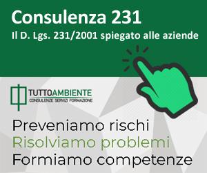 Consulenza 231: il D. Lgs. 231/2001 spiegato alle aziende