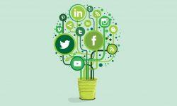 green-social-media-marketing