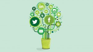 green-social-media-marketing