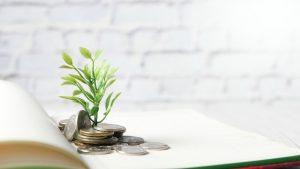 Registro aziendale con un tesoro green da valorizzare